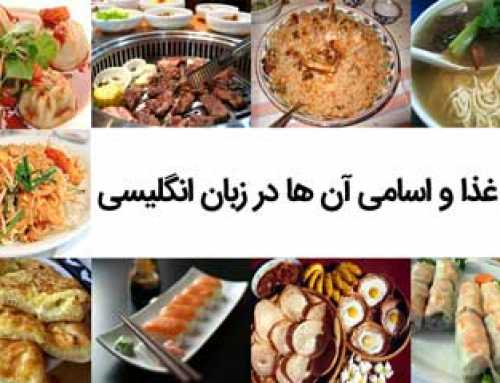 انواع غذا و اسامی آن ها در زبان انگلیسی